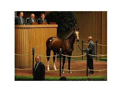 This son of A.P. Indy brought $1.5 million during the second day of the Keeneland sale Tuesday morning.