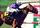 Will O Wisp wins Del Mar Derby.