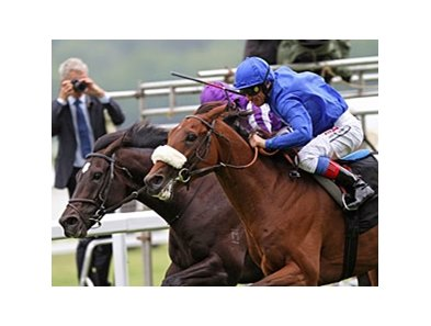 "Rewilding (right) overtakes favorite So You Think to win the Prince of Wales's Stakes.<br><a target=""blank"" href=""http://www.bloodhorse.com/horse-racing/photo-store?ref=http%3A%2F%2Fpictopia.com%2Fperl%2Fgal%3Fprovider_id%3D368%26ptp_photo_id%3D9566463%26"