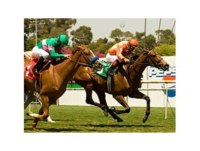 "Evening Jewel held off Cozi Rosie to win the Honeymoon Handicap at Hollywood Park. <br><a target=""blank"" href=""http://www.bloodhorse.com/horse-racing/photo-store?ref=http%3A%2F%2Fpictopia.com%2Fperl%2Fgal%3Fprovider_id%3D368%26ptp_photo_id%3D9035390%26ref%3Dstory"">Order This Photo</a>"