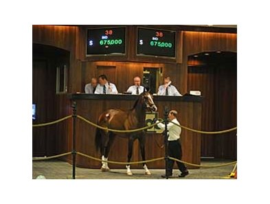 The sale topper, an A.P. Indy colt, was a big boost to the bottom line at the OBS 2-year-old in training sale.