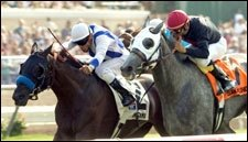 Amorama Gets Clear Sailing, Wins Mabee