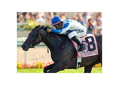 "Multiple graded stakes-winner Rutherienne returns in the Frances A. Genter Stakes.<br><a target=""blank"" href=""http://www.bloodhorse.com/horse-racing/photo-store?ref=http%3A%2F%2Fpictopia.com%2Fperl%2Fgal%3Fprovider_id%3D368%26ptp_photo_id%3D2046382%26ref%3Dstory"">Order This Photo</a>"