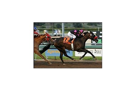 Lava Man, shown winning the 2007 Santa Anita Handicap, could return for the Hollywood Gold Cup.