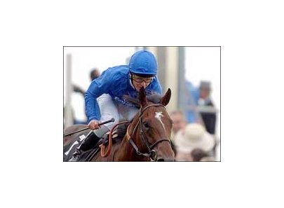 Godolphin's Shamardal, impressive winner of the St. James's Palace Stakes, has been retired.