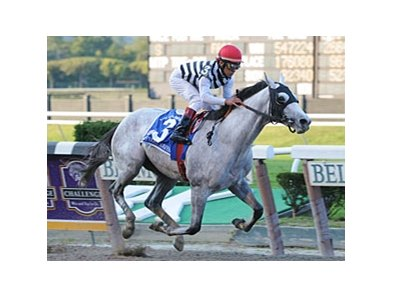 "Vineyard Haven won the mile Champagne as a 2-year-old.<br><a target=""blank"" href=""http://www.bloodhorse.com/horse-racing/photo-store?ref=http%3A%2F%2Fpictopia.com%2Fperl%2Fgal%3Fprovider_id%3D368%26ptp_photo_id%3D6183791%26ref%3Dstory"">Order This Photo</a>"
