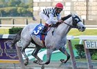 Vineyard Haven is in control in the Champagne.