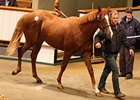 Book 3 Brings Tattersalls Oct. Sale to End