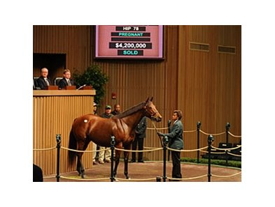 Christmas Kid brought the highest price during session one of the Keeneland November Sale.