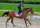 Plum Pretty works at Churchill Downs.