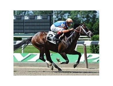 Overdriven broke his maiden by 3 1/2 lengths at Belmont Park.