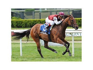 "Criticism tries to continue her winning ways in the New York Handicap.<br><a target=""blank"" href=""http://www.bloodhorse.com/horse-racing/photo-store?ref=http%3A%2F%2Fpictopia.com%2Fperl%2Fgal%3Fprovider_id%3D368%26ptp_photo_id%3D8147547%26ref%3Dstory"">Order This Photo</a>"