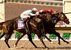 Acclamation wins the Pacific Classic