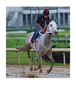 Joyful Victory at Churchill Downs.