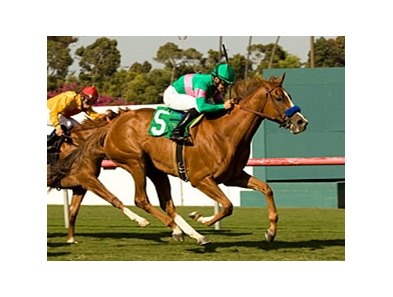 "Cozi Rosie won the Senorita Stakes May 2 at Hollywood.<br><a target=""blank"" href=""http://www.bloodhorse.com/horse-racing/photo-store?ref=http%3A%2F%2Fpictopia.com%2Fperl%2Fgal%3Fprovider_id%3D368%26ptp_photo_id%3D8939200%26ref%3Dstory"">Order This Photo</a>"