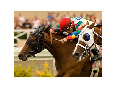 "Starlarks gets up late to win the San Clemente. <br><a target=""blank"" href=""http://www.bloodhorse.com/horse-racing/photo-store?ref=http%3A%2F%2Fpictopia.com%2Fperl%2Fgal%3Fprovider_id%3D368%26ptp_photo_id%3D8378638%26ref%3Dstory"">Order This Photo</a>"