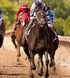 Stopchargingmaria wins the 2015 Allaire DuPont Distaff Stakes.