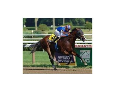 Pomeroy, winner of the A. G. Vanderbilt at Saratoga, was scratched from the Breeders' Cup Sprint Wednesday morning.