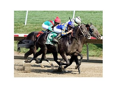 Barbaro Stakes winner Awesome Bet leads a field of six in the Zia Park Derby.