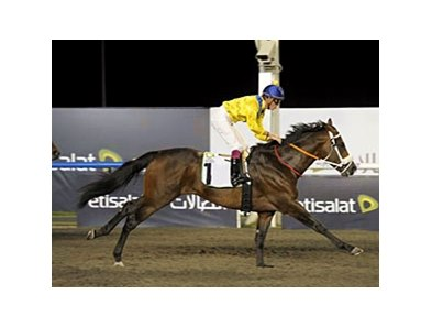 Bold Silvano cruises to victory in the Al Maktoum Challenge R2.