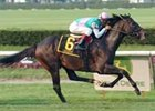 Cacique Provides Spice in Man o' War Triumph