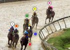 Preakness Race Sequence