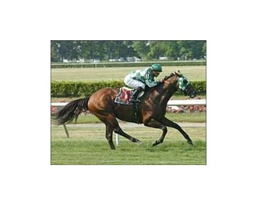 "Ecclesiastic and Javier Castellano win the Jaipur Stakes, Sunday at Belmont Park.<br><a target=""blank"" href=""http://www.bloodhorse.com/horse-racing/photo-store?ref=http%3A%2F%2Fpictopia.com%2Fperl%2Fgal%3Fprovider_id%3D368%26ptp_photo_id%3D1283936%26ref%3Dstory"">Order This Photo</a>"