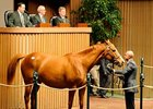 Keeneland Sale Continues to Surge