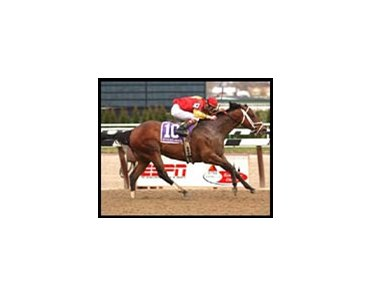 Affirmed Success became a grade I winner at age eight with this victory in the Carter Handicap.
