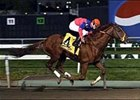 Bowman's Band wins the Meadowlands Breeders' Cup Stakes.