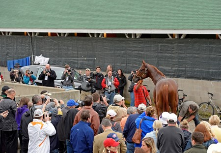 Caption: Dortmund and crowd at Baffert barn