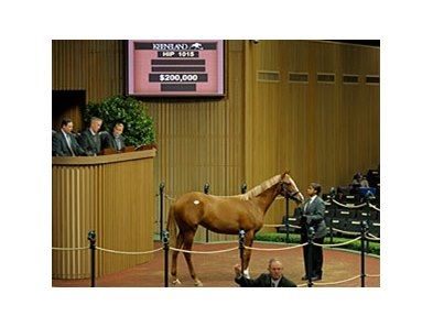 "The last A.P. Indy offspring to go through the sale ring. <br><a target=""blank"" href=""http://photos.bloodhorse.com/Photographers/Anne-M-Eberhardt/23986983_7NbQ9Q#!i=2087432666&k=TtdWpbm"">Order This Photo</a>"