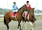 Perfect Drift during his retirement ceremony at Turfway Park in Sept., 2008.