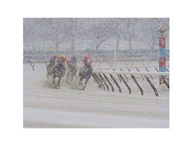 Aqueduct is one of the tracks impacted by winter storm.