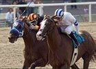 "Buzzards Bay (inside) fights off Sun Boat to win the Californian, Saturday at Hollywood Park.<br><a target=""blank"" href=""http://www.bloodhorse.com/horse-racing/photo-store?ref=http%3A%2F%2Fpictopia.com%2Fperl%2Fgal%3Fprovider_id%3D368%26ptp_photo_id%3D1328549%26ref%3Dstory"">Order This Photo</a>"