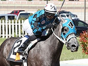 Diabolical Dame wins the 2015 Bank of Albuquerque Stakes.