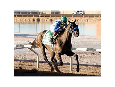 Isn't He Clever returns to New Mexico for the Borderland Derby.