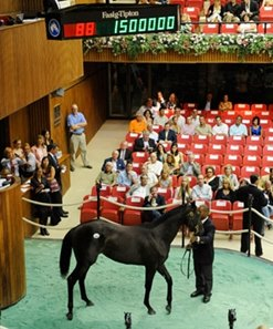 Hip no. 88, a Medaglia d'Oro filly, brought the day's top price of $1.5 million.