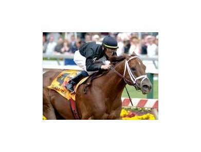 Maryland Breeders' Cup Sprint winner Friendly Island heads the field for the Palos Verdes.