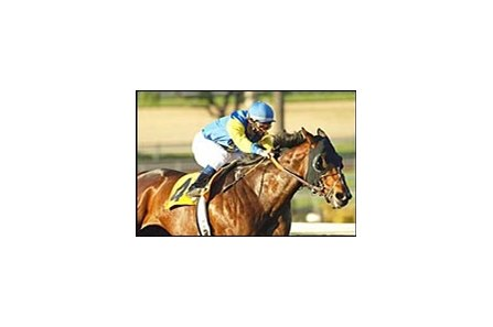 Pleasantly Perfect won the San Antonio in his 2004 debut.