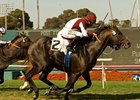 "Victor's Cry won the 2010 Shoemaker Mile at odds of 21-1.<br><a target=""blank"" href=""http://www.bloodhorse.com/horse-racing/photo-store?ref=http%3A%2F%2Fpictopia.com%2Fperl%2Fgal%3Fprovider_id%3D368%26ptp_photo_id%3D9035395%26ref%3Dstory"">Order This Photo</a>"
