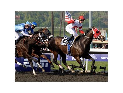 "Furthest Land flies home in the Dirt Mile to give Julien Leparoux his third win in the Breeders' Cup.<br><a target=""blank"" href=""http://www.bloodhorse.com/horse-racing/photo-store?ref=http%3A%2F%2Fpictopia.com%2Fperl%2Fgal%3Fprovider_id%3D368%26ptp_photo_id%3D8610331%26ref%3Dstory"">Order This Photo</a>"
