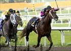 First Samurai, who won via disqualification, races ahead of Flashy Bull (10) in the Fountain of Youth.