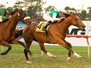 Champs Elysees Sweeps to Turf Cup Win