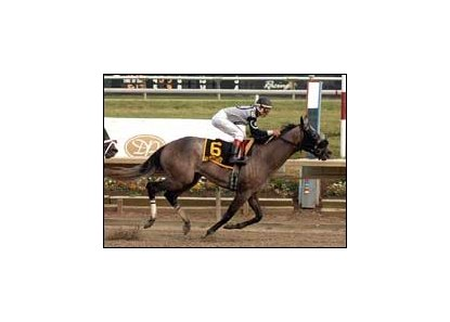 "<b>Xchanger carries Edgar Prado to sentimental win in Delaware Park's Barbaro Stakes.</b><br><a target=""blank"" href=""http://www.bloodhorse.com/horse-racing/photo-store?ref=http%3A%2F%2Fpictopia.com%2Fperl%2Fgal%3Fprovider_id%3D368%26ptp_photo_id%3D1730964%26ref%3Dstory"">Order This Photo</a>"