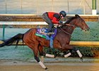 Switch working at Churchill Downs 10/30/2011.