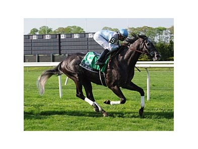 "Cosmonaut powers home in the Fort Marcy.<br><a target=""blank"" href=""http://www.bloodhorse.com/horse-racing/photo-store?ref=http%3A%2F%2Fpictopia.com%2Fperl%2Fgal%3Fprovider_id%3D368%26ptp_photo_id%3D8063844%26ref%3Dstory"">Order This Photo</a>"
