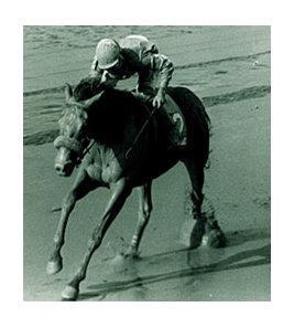 Crusader Sword won the 1987 Hopeful Stakes.