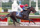 Medaglia d'Oro Draws Post 11, Pleasantly Perfect 7 in World Cup