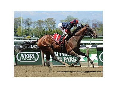 Tonalist comes home strong to take the Westchester.